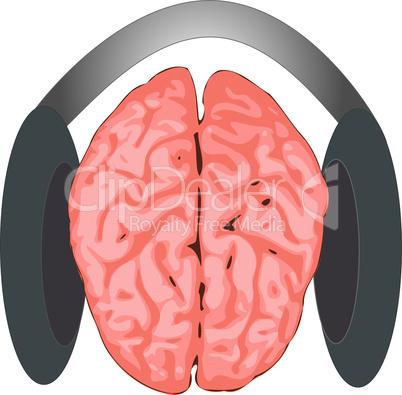 brain listening