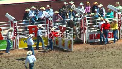 rodeo, bareback bronc riding, nice ride, good dismount