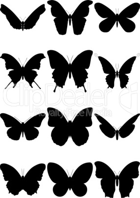 Vector illustration set of 12 butterfly silhouettes.