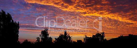 Gold und Daunen am Morgenhimmel in rosaroten Farben