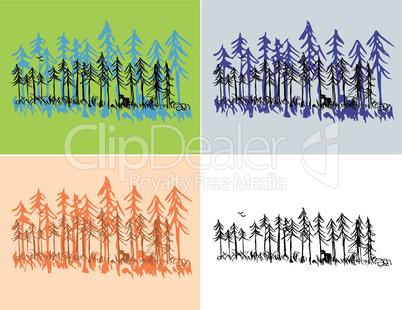 Seasonal Forest Scenes
