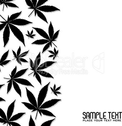 Cannabis Blätter