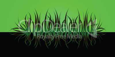 grass reflect green
