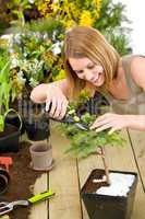Gardening - woman trimming bonsai tree