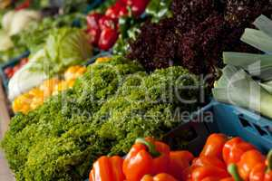 Grocery store shopping - Close-up of vegetable
