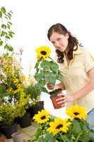 Gardening -  woman holding flower pot with sunflower