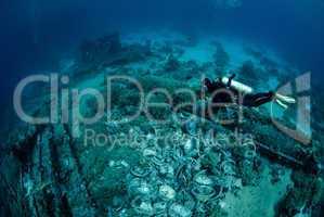 Female scuba diver over ship wreckage