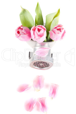 Conceptual photo with flowers