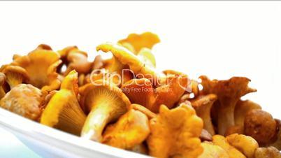 Chanterelle Turning Dish - Variant 2