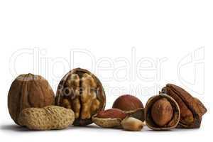 geöffnete und geschlossene pecanüsse walnüsse erdnüsse und haselnüsse