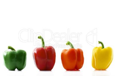 vier farbige paprika in reihe