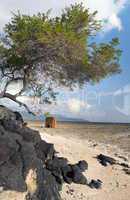 Volcanic Rock in shoreline with cabin