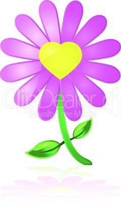 Lila Blume mit Herz