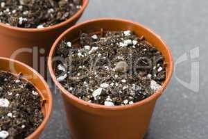 Blumentöpfe - Plant Pots