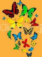 Color butterflies