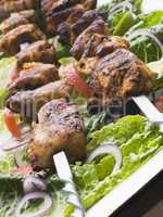 Chicken Tikka Marinated Shashlik Kebabs