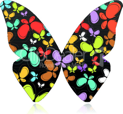 several colorful butterflies