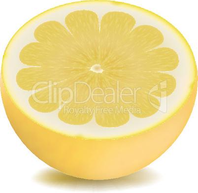 piece of lemon