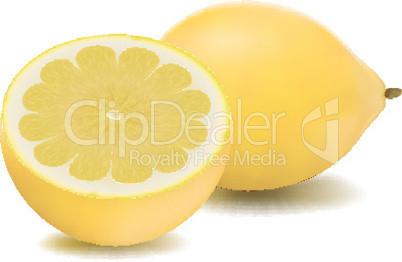 lemon in isolated background
