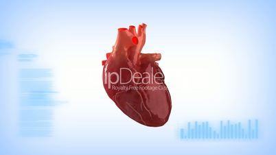 Human heart monitor concept