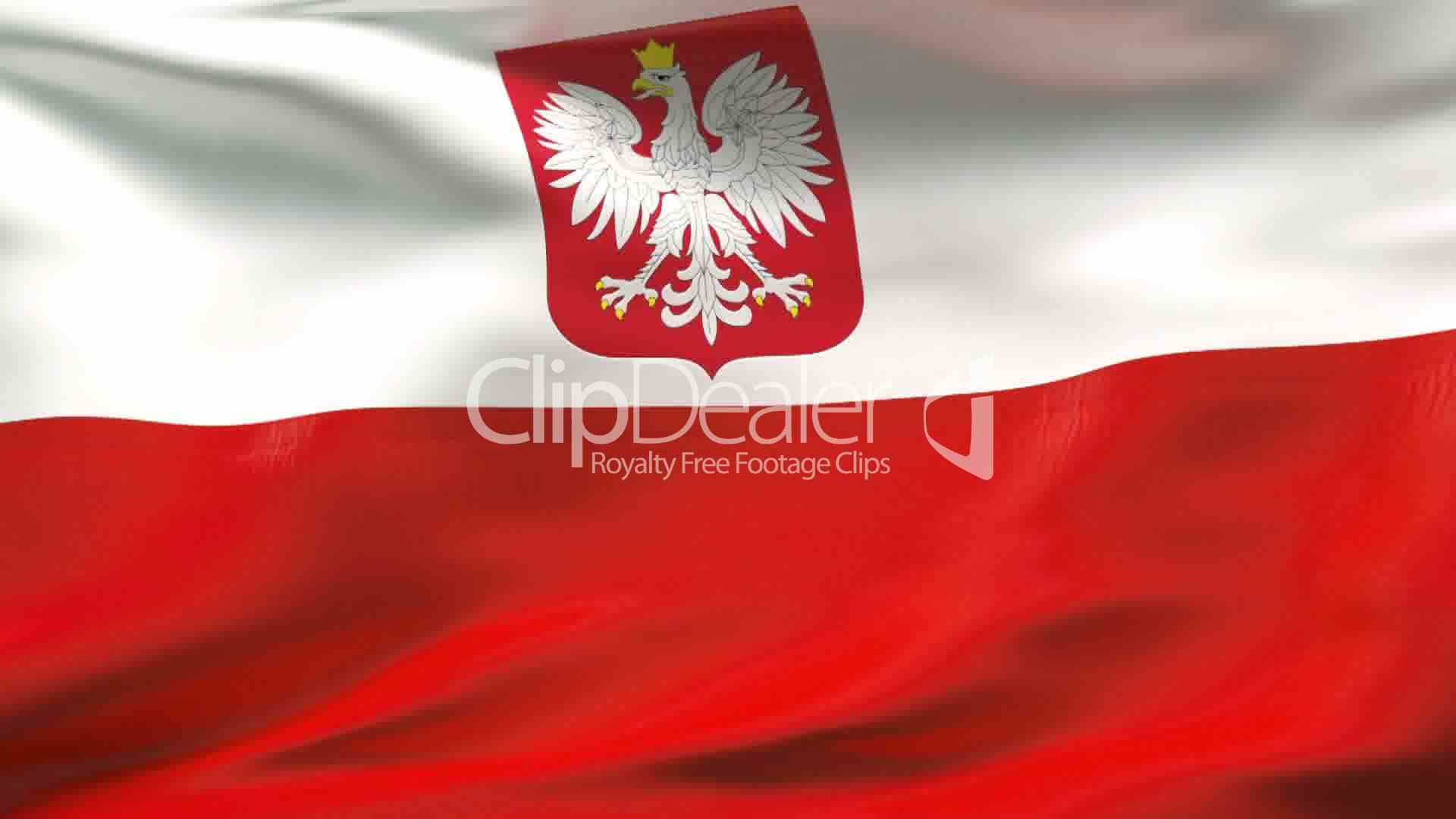creased poland flag in wind slow motion royalty free video and