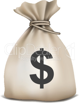sack full of dollar on isolated background