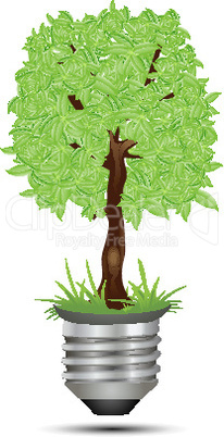 tree on bulb holder