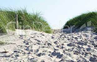 Düne mit Spuren im Sand
