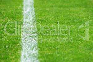 fußball rasen mit linie links - soccer grass