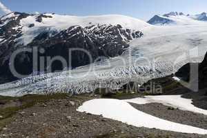 Exit Glacier 7