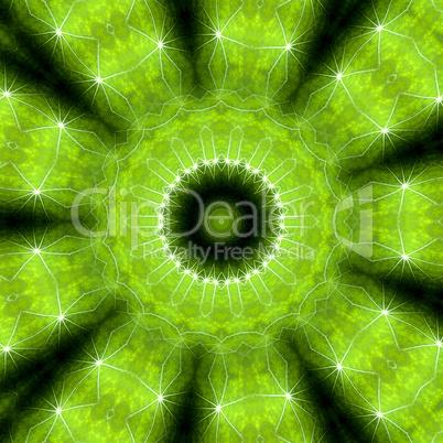 Mandala - Grüne Hoffnung 04