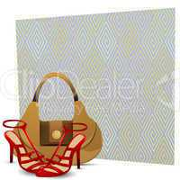 lady footwears with hand bag