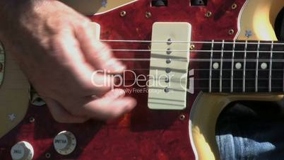 Whammy Bar On Vintage Guitar