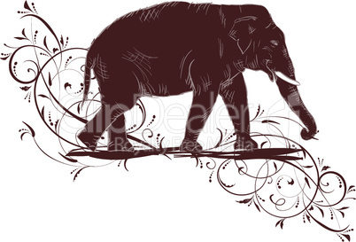Elephant sketch decorated floral design