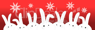 Funny rabbits on red christmas background