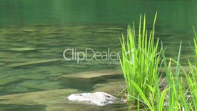 An der Wasser Quelle - Video - At the Lake