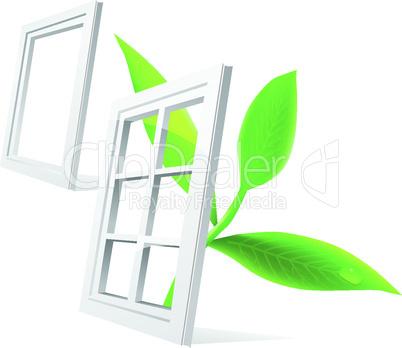Fensterpflanze