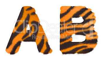 Tiger fell A and B letters isolated