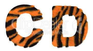 Tiger fell C and D letters isolated