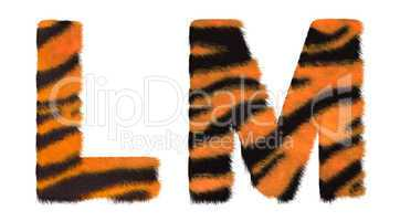 Tiger fell L and M letters isolated