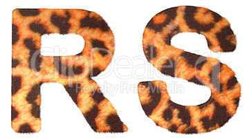 Leopard fur R and S letters isolated