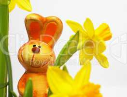 Happy Easter Bunny with Flowers - Osterhase