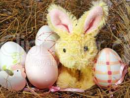 Osternest mit Hase und Ostereiern - Easter Bunny