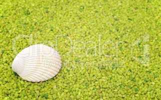 Green Wellness - Concept