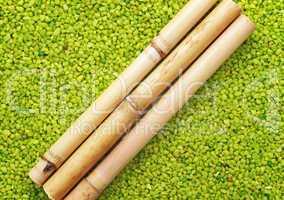Bamboo Green - Wellness Bambus