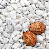 Wellness Picture with white Stones