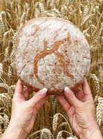 Unser tägliches Brot - Bread & Cereals
