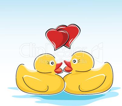 Zwei verliebte Badeenten