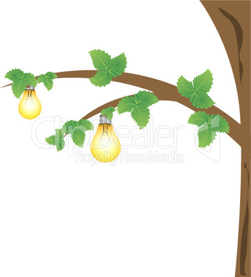 Glübirnen am Baum