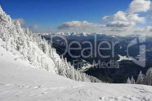 Berglandschaft im Winter